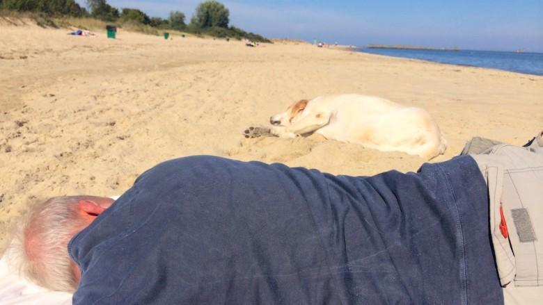 leniwa plaża